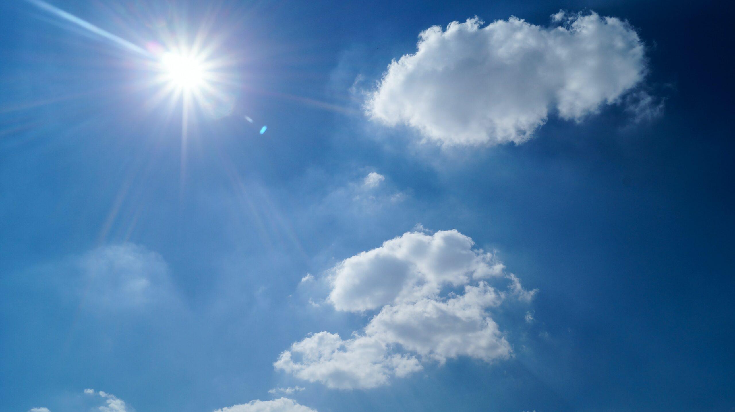 Von Sonnenblumen zu Solarenergie